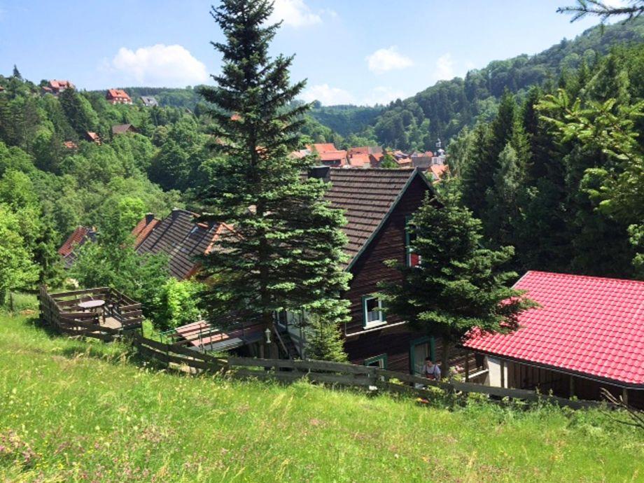 Außenaufnahme Ferienhaus am Bach