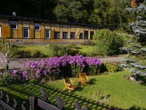 Ferienwohnung Kaifenheimer Mühle