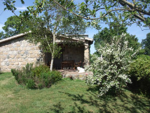 Holiday house Podere San Vincenzo Alba