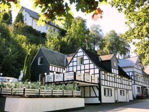 Ferienwohnung Haus-Nr: DE-57392-66