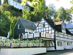 Ferienhaus Haus-Nr: DE-57392-69