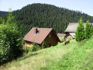 Ferienhaus Alpirsbach-Reinerzau, Haus-Nr: DE-72275-04