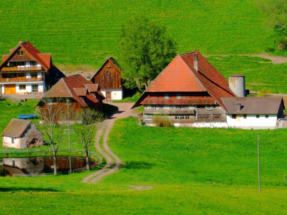 Außenaufnahme Ferienwohnung im Schwarzwald
