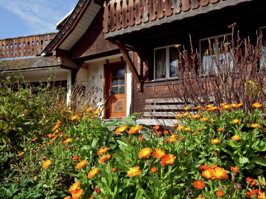 Außenaufnahme Schwarzwaldhaus