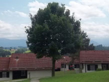 Ferienhaus Hochbergle