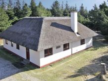 Ferienhaus Lyng Villa