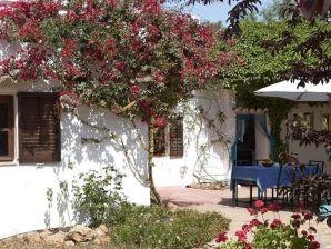 Villa Can Amoro