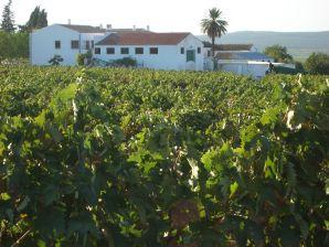 Landhaus El Pintao ó La Corneja