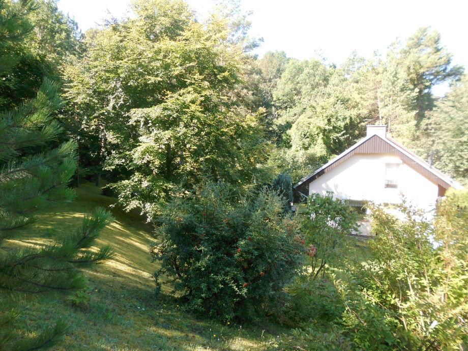 "Ferienhaus ""Waldesruh"""