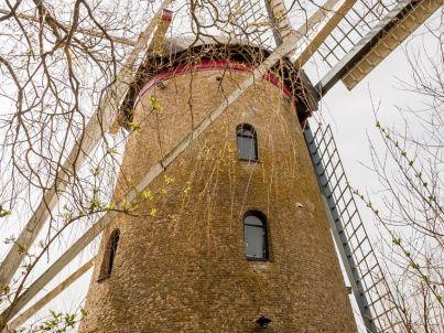 Windmühle Landzigt