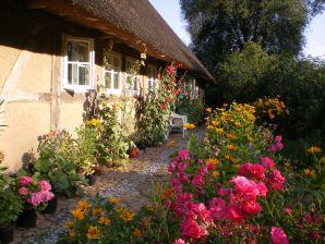 Kleine Ferienwohnung Bauernhaus Pauli Elbaue