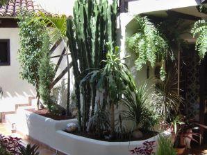 Ferienwohnung Apartamentos Monasterio de San Antonio