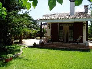 Cottage Eucaliptus