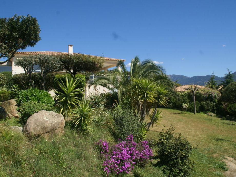 Außenaufnahme Villa - ST ANDREA D'ORCINO