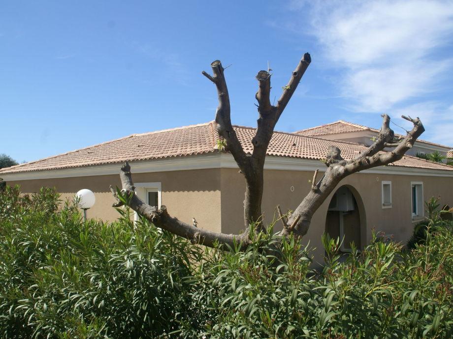 Außenaufnahme Villa de vacances - Algajola