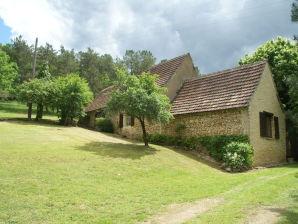Ferienhaus Maison de vacances - ST-LEON-SUR-VEZERE