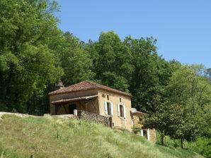 Ferienhaus Maison de vacances Villefranche du Périgord Bezetou