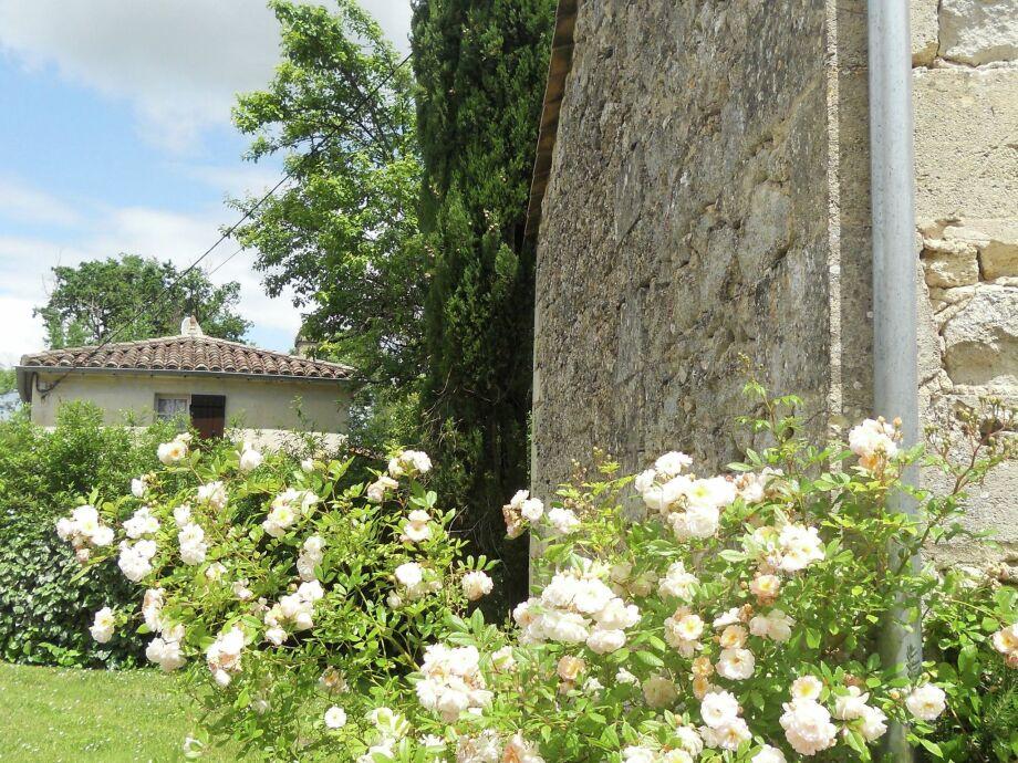Außenaufnahme Les Fleurs Roses