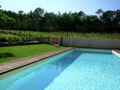 Gîte entouré de vignes