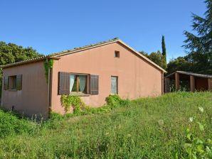 Villa Calme et vignes près de Montpellier