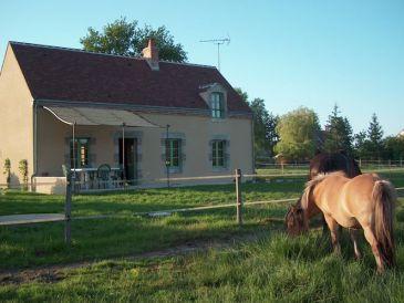Ferienhaus Maison de vacances - VITRY-AUX-LOGES