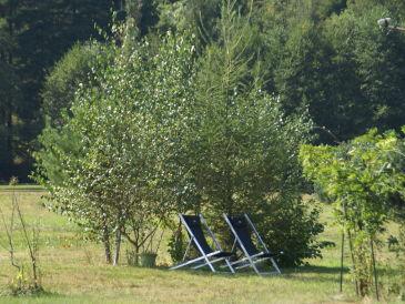Ferienhaus Maison de vacances - TURQUESTEIN BLANCRUPT