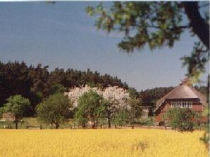 Bauernhof Der Schlehenhof