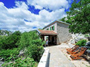 Ferienhaus Stone house Dobroselo