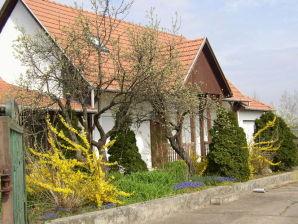 Ferienhaus Tisza