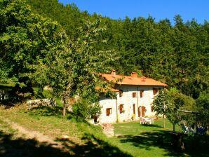 Bauernhof Casa Metato