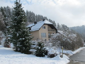 Holiday apartment Fasse