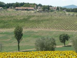Bauernhof Robinia
