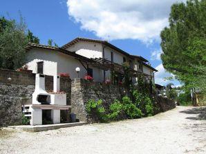 Cottage Molinella