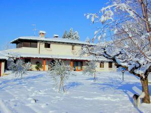 Ferienhaus Casa Polo Tuttincluso