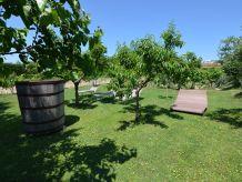 Ferienwohnung Venturi - Olive