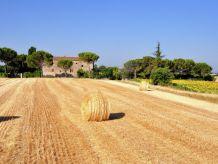 Bauernhof Cipressi