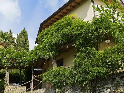 Borgo Gallinaio Glicine