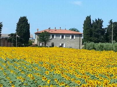 Casa Francesca 4