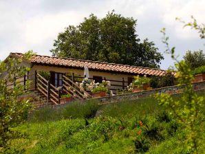 Ferienhaus Mammolo Ciliegiolo