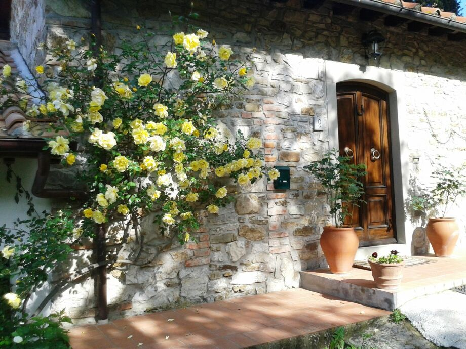 Außenaufnahme Villa Buonamici - Il Cottage