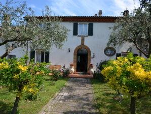 Ferienhaus Villa Napoleon