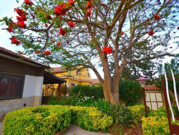Ferienhaus Casa Limoncello Golf