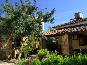 Ferienhaus Casa del Carrubo