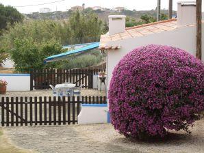 Cottage Casa do Pinhal