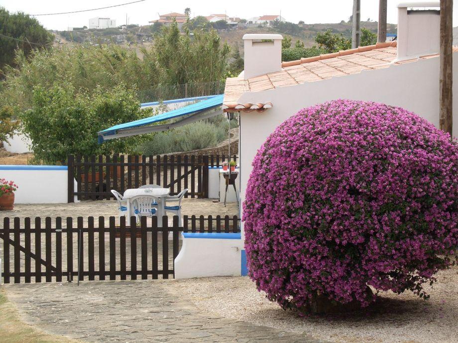 Außenaufnahme Casa do Pinhal