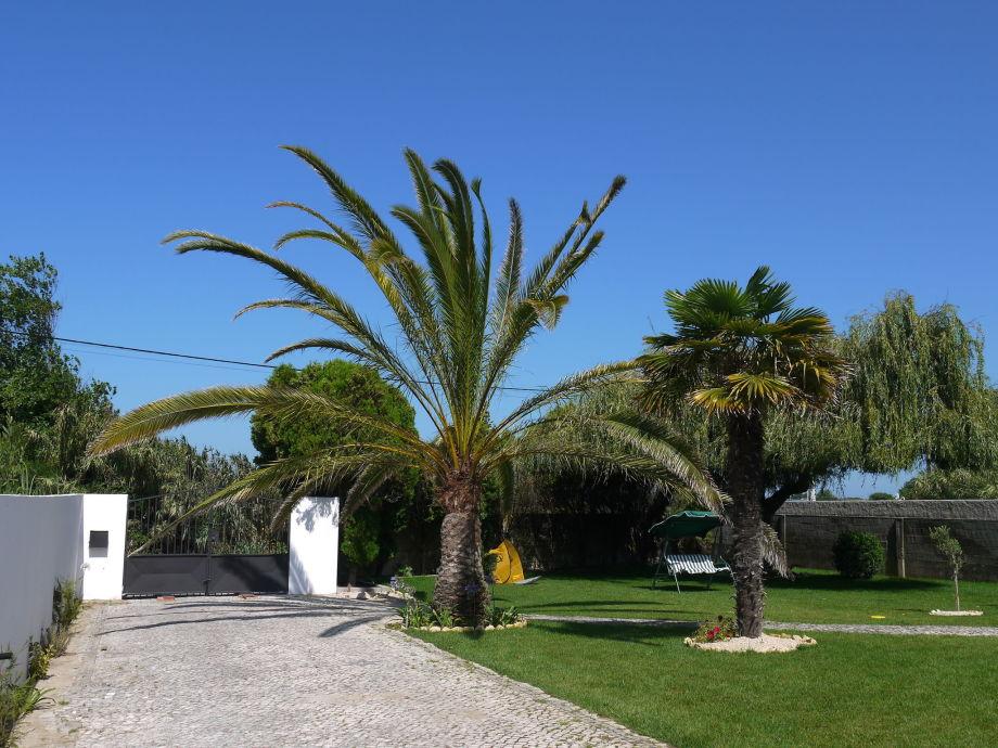 Außenaufnahme Casa Oliveira