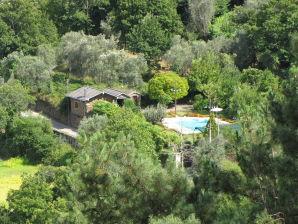Cottage Quinta Vinha