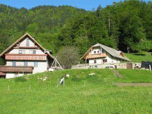 Ferienwohnung Tourist farm Pr Vazniku 1