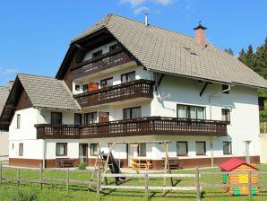 Ferienwohnung Apartments Bor 7