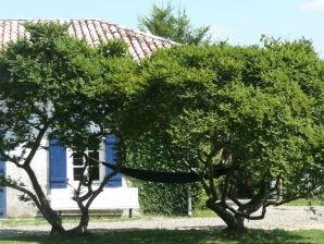 Ferienhaus La Peyrade